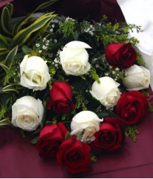 1 Dozen of Imported Red and White Roses