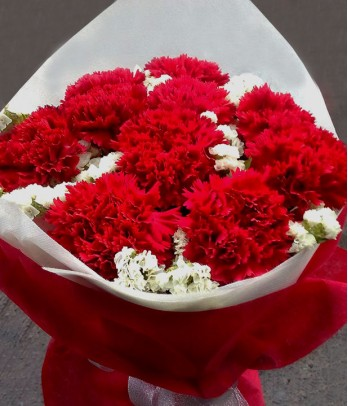 1 dozen of red carnations bouquet