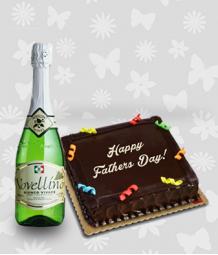 Chocolate Cake and Novellino Bianco Vivace Wine