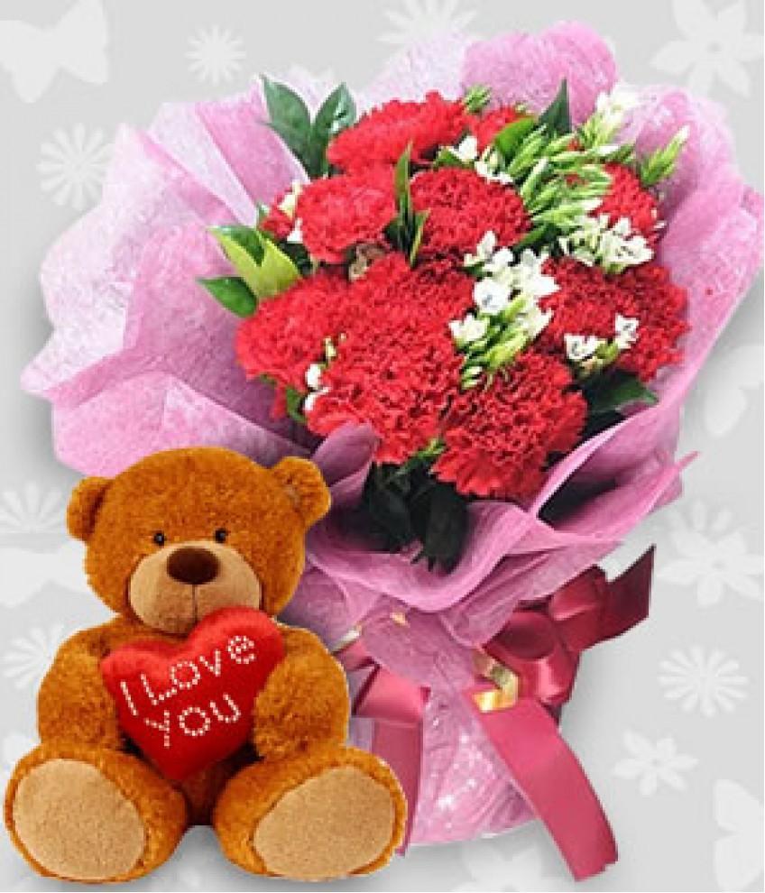 Birthday flowers and teddy comousar birthday flowers and teddy 1 dozen pink carnations with izmirmasajfo
