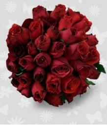2 Dozen Red Ecuadorian Roses